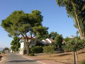 Find your friends from Kibbutz Shamir!